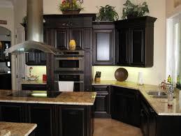 Dark Kitchen Cabinets With Black Appliances Home Design Ideas
