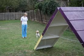 Introduction: DIY Dog Agility A-Frame
