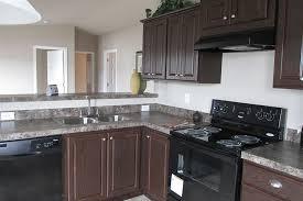 kitchen design ideas black appliances photo 7
