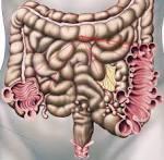 Rückenschmerzen - Ursachen, Behandlung Tipps info