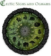 Celtic Tree Chart Irish Astrology Apanache