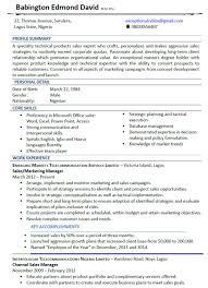 Example Resume Summary acworldcup tk Uptowork