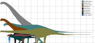 brachiosaurus size morrison dinosaur size chart by gojira5000 on deviantart