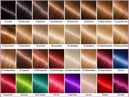 ion hair color chart for beginners and