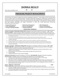 Project Manager Resume Summary Musiccityspiritsandcocktail Com