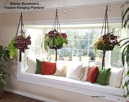 Instant Indoor Hanging Planter: Lightweight