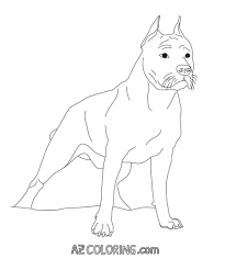 Pitbull Coloring Pages For Adults Face Page Cute Puppy Cute ...