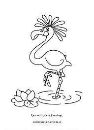 Kleurplaat Flamingo Dieren