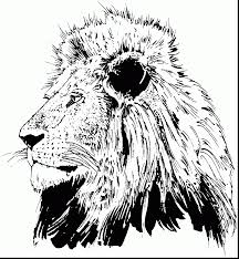 Small Picture Fabulous adult lion head coloring pages with lion coloring pages