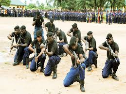 Image result for photos of nscdc logo