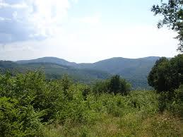 Poiana Ruscă Mountains