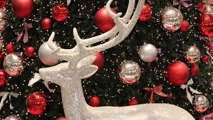 Elch Basteln Tierische Weihnachtsdeko Sat1 Ratgeber