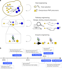 Synthetic Biology Strategies For Microbial Biosynthesis Of