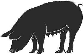 豚 豚肉 雌豚 Pixabayの無料ベクター素材