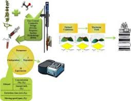 Optimizing the extraction of polyphenols from Sideritis montana L ...