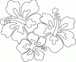 Coloring Pages Hawaiian Flowers Hibiscus Ivanvalencia Download