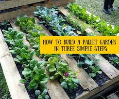 Small Picture Best 25 Palette garden ideas only on Pinterest Herb garden