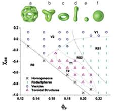 Phd thesis molecular dynamics FC