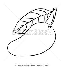 line drawing of mango simple line vector
