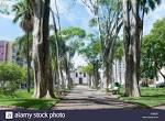 imagem de Campo Belo Minas Gerais n-8