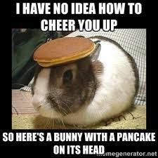 I have no idea how to cheer you up so here's a bunny with a ... via Relatably.com