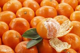 「橘子」的圖片搜尋結果