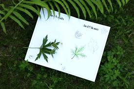 About The Printable Nature Journal For Kids Template Article Free