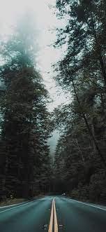 Forest Preset Lightroom Free ...