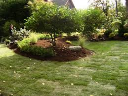 Small Picture Seattle Landscape Design Barbara Tuscany Courtyard Landscape