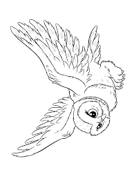 Harry Potter Coloring Pages Hedwig Coloring Page