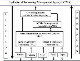 Amc Organization Chart Organizational Structure Of Atma Download Scientific Diagram