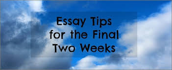 bar exam essay tips for final two weeks