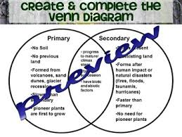 Primary And Secondary Succession Venn Diagram Ecological Primary Secondary Succession Lesson Worksheet By