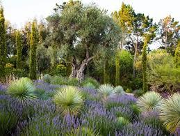 Small Picture 8 best Garden Design images on Pinterest Garden ideas Gardens