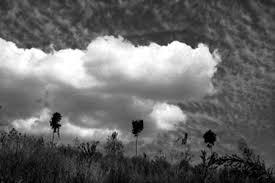 Resultado de imagen de Viento y nubes