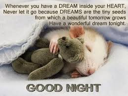 Cute Good Night Quotes Gorgeous Cute Good Night Quotes Messages For Herhim Saying Images