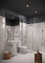 Inspiring Type Of Paint For Bathroom Ceiling 41 For Your Elegant Design  with Type Of Paint For Bathroom Ceiling