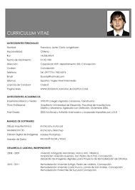 Modelos De Curr Culos Prontos Curriculum Vitae Zooz1 Plantillas
