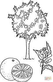 Small Picture Coloring Pages Days Of Christmas Coloring Page Free Printable