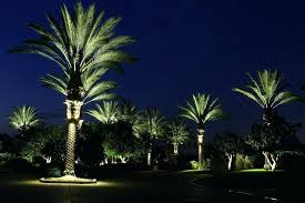 tree lighting ideas. Landscape Tree Rings Size Outdoor Led Palm Lighting Fixtures Ideas