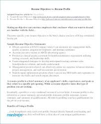 objectives for jobs resume objective examples government jobs beautiful stock sample