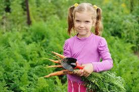 hobbies for kids. popular hobbies for kids | indoor and outdoor activities in brisbane