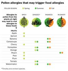 Pollen Food Allergy Chart Must Read Wapo Article On Oral Allergy Syndrome