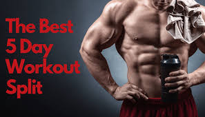 5 day workout routine to get ripped plete guide