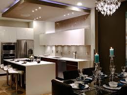 stainless steel kitchen sink elegant nine armed chandelier dark brown wooden kitchen counter simple latticed white
