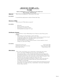 Cashier Duties For Resume Resume Work Template