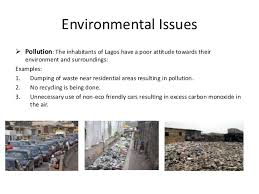 for environmental essay for environmental
