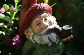 ask anyone astute in the history of irish lore and they will most certainly say there is a definitive difference between a leprechaun and a gnome