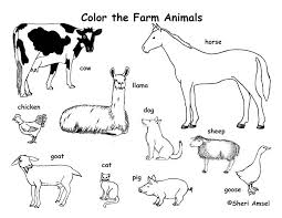 Small Picture Farm Animals Coloring Page