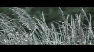 Aspect Ratio Letterbox Test (HD) - YouTube